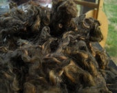 Chocolate Brown CURLS . Lincoln. art yarn. felting. doll art