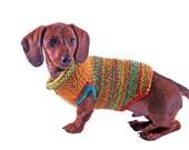 Autumn Dog Sweater with rib neck