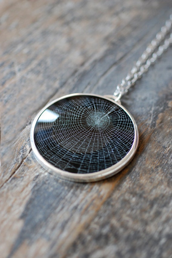 Dollybird Preserved Spider Web Pendant 2 inch
