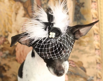 Cute black  color  mini  hat with black and white color   feather and   flowers for dog or cat