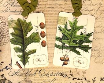 Tags, Vintage Botanicals, Oak Leaves, Autumn Tags
