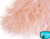 Champagne Ostrich Feathers, 6 Inch Strip - CHAMPAGNE Ostrich Fringe feather : 1397