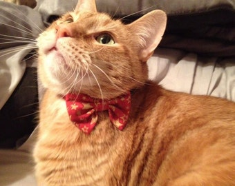 Cat Bow Tie Collar For Christmas
