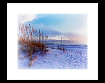 Sea-Oats 8 X 10 Fine Art Print