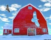 Hawk Barn...16x20 matted fine art photograph / giclee print