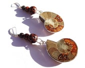 Ammonite Fossil Long Dangle Earrings - Gray, Red and Browns Shell