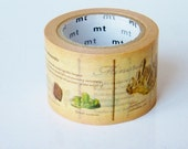 MT ex Encyclopedia Japanese Washi Tape / 30mm wide Minerals