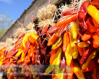 Chili Peppers drying in New Mexico, 8x12 Fine Art Photograph (G9384