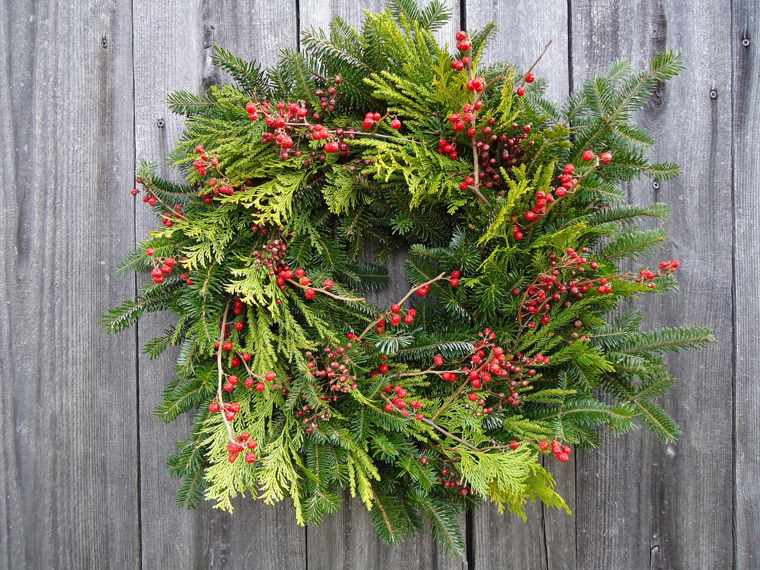 "20"" Cardinal Lime Wreath - Fresh, Natural, Christmas With a Twist"
