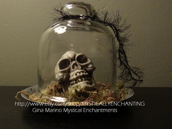 Glass Cloche with Large Skull & Moss