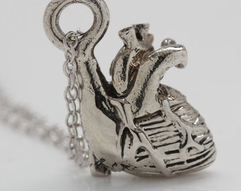 Tiny Anatomical Heart Necklace  in .925 Sterling Silver on a sterling silver chain, Made in NYC