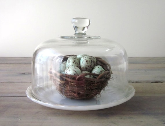 Vintage Glass Cloche Bell Jar Dome with Milk Glass Plate RESERVED FOR KATHY
