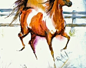 Arabian Arab Bey Watercolor horse Print SIGNED by the Artist Carol Ratafia DOUBLE MATTED to 16x20