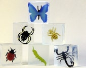 Glycerin Bug Soap for Holidays and Birthday Gifts for Boys. Insects. Etymology. Spider. Butterfly