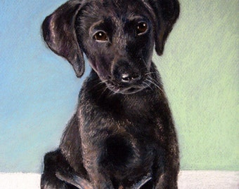 "Labrador Puppy - Black Lab Puppy - 8""x10"" Pastel Painting Print"