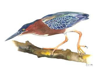 "Limited Edition GICLEE MINI Print /  ""Balancing Act"" /  Watercolor Painting of Green Heron"
