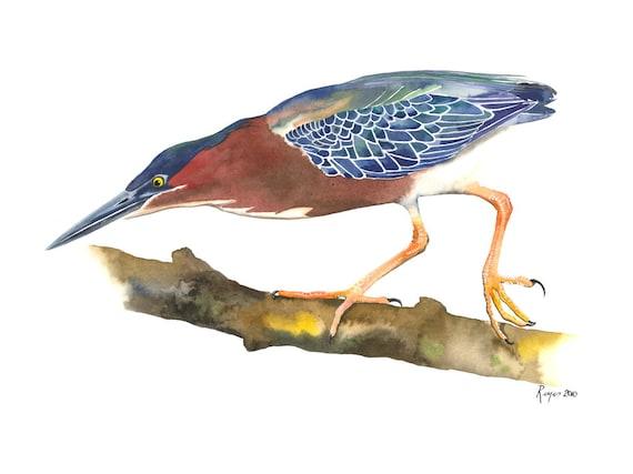 "Limited Edition GICLEE MINI Print /  ""Balancing Act"" /  Watercolor Painting of Green Heron"