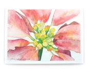 Watercolor Christmas Card Set Poinsettia Floral Painting