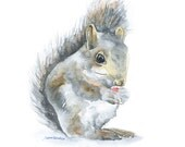 Squirrel Watercolor Giclee Print 11x14