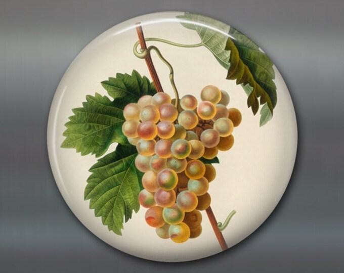 """3.5"""" kitchen magnet with vintage grape illustration - large round refrigerator magnet of fruit illustration - MA-703"""