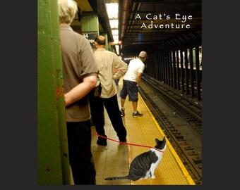 Gifts for Cat Lovers, New York City, Cat Book, Whimsical, Cat Art, Cat Lover Gift, Deborah Julian