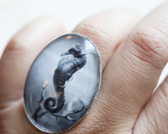 Large Seahorse Ring Jewelry- Antique silver toned adjustable cocktail ring. Seahorse photograph Under Glass