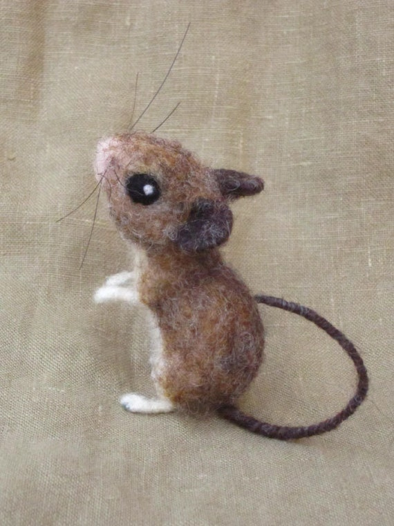 Field mouse animal - photo#14