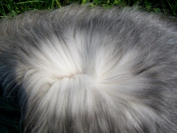 Gray Silver English Angora Fiber Felting Spinning 5oz reserved for Peggy