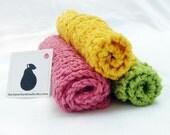 Raspberry Limeade Dishcloths - 100% cotton, set of 3