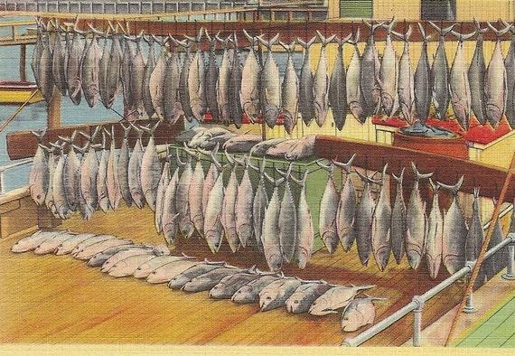Fish Catch at Seashore Vintage Linen Postcard Fishing Theme Seaside Fish Hanging on the Dock