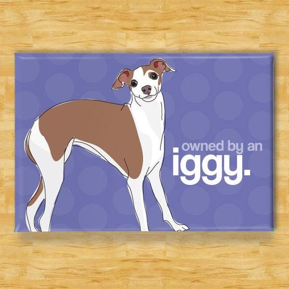 Italian Greyhound Magnet - Owned by an Iggy - Italian Greyhound Gifts Fridge Dog Refrigerator Magnets