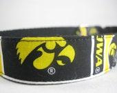 Hemp dog collar - Iowa Hawkeyes