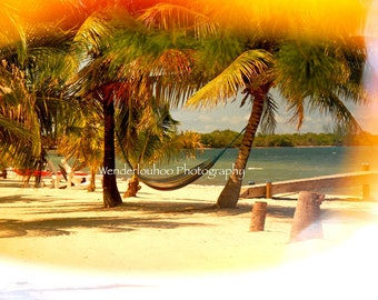 Hammock Through Rose-tinted Glasses - Belize - 8 x 10 Photograph