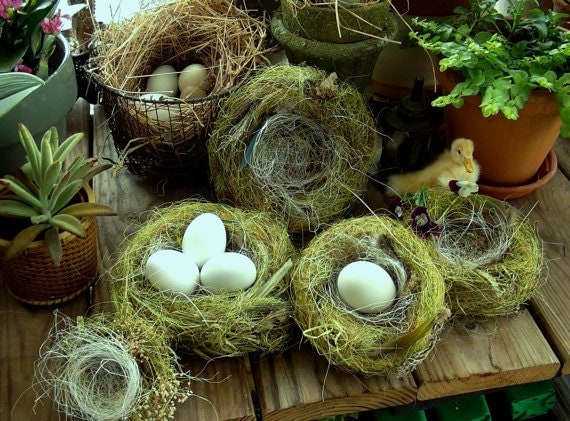 Hand-spun Nests For Your Special Eggs