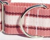 Belt Me Up: Upcycled belt collar