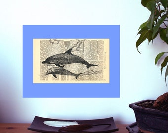 Dolphins Large Art Print on Antique 1896 Dictionary Book Page