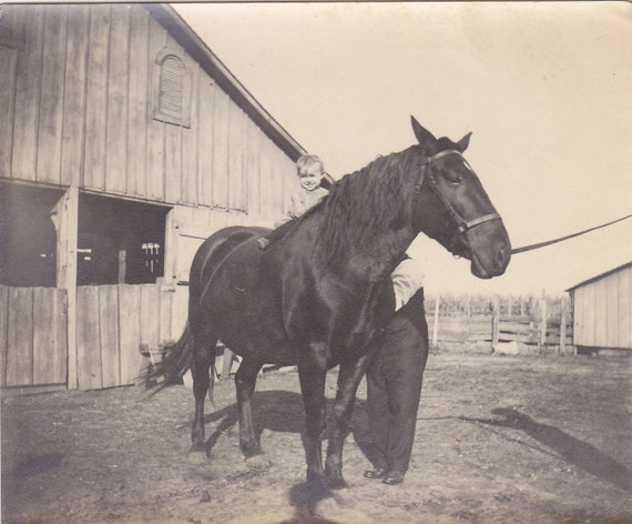 Toddler on a Horse Vintage Photograph (YY)