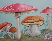 Reserved - MUSHROOMS - BLUE background - printed by DONALD Art Company - 1971 - ready for framing - Holland