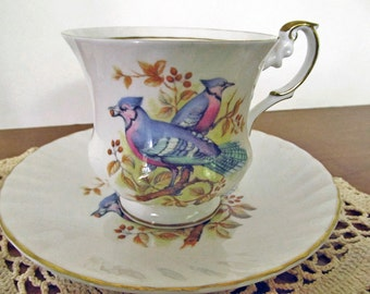 Birds of America china cup and saucer with colorful Bluejay 20% DISCOUNT