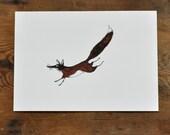 Print - Flying Fox