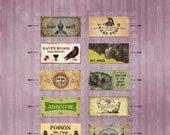 Miniature Dollhouse Labels Vintage / Apothecary / Magic digital download sheet