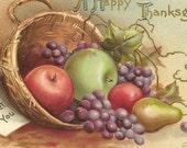 Ellen Clapsaddle Thanksgiving Vintage Postcard Basket of Fall Fruits S Garre Publisher