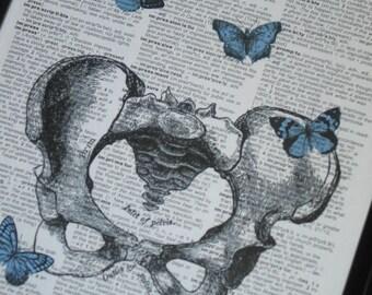 BOGO SALE Dictionary Art Print HHP Original Design Dictionary Art Print Vintage Dictionary Book Page Print  Pelvis and Blue Butterflies