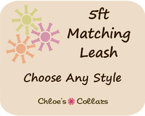 5ft Dog Leash- Choose Your Matching Style