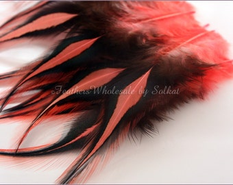 Craft Feathers Coral Laced Rooster Saddle Dyed Peach Colored Feathers for Crafts 10 PCS