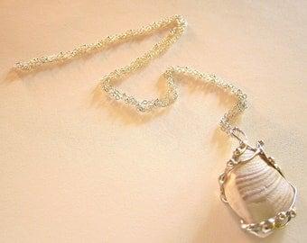 California Seashell Necklace