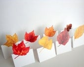 Autumn Leaf - Small Place Card, Table Number card, Escort cards, weddings events