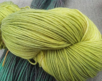 Hand Dyed Blue Faced Leicester Wool Yarn- Grasshopper- worsted weight