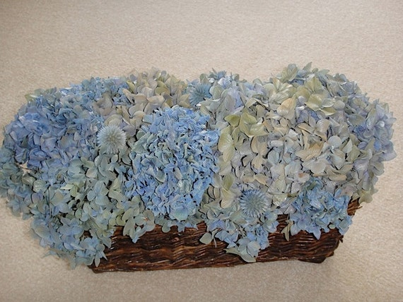 Dried Blue Hydrangea Arrangement In A Brown Wicker Basket Accented With Blue Globe Thistle