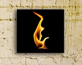 Fire photography, Fire Series:  La Harpe, 10x10 thinwrap, ready to hang